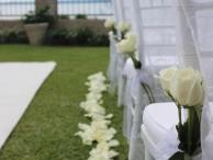 Wedding Ceremony Chair Decorations.JPG