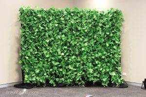 Green Photo Backdrop