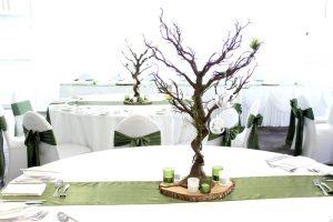 Manzanita Tree - Brown with Green